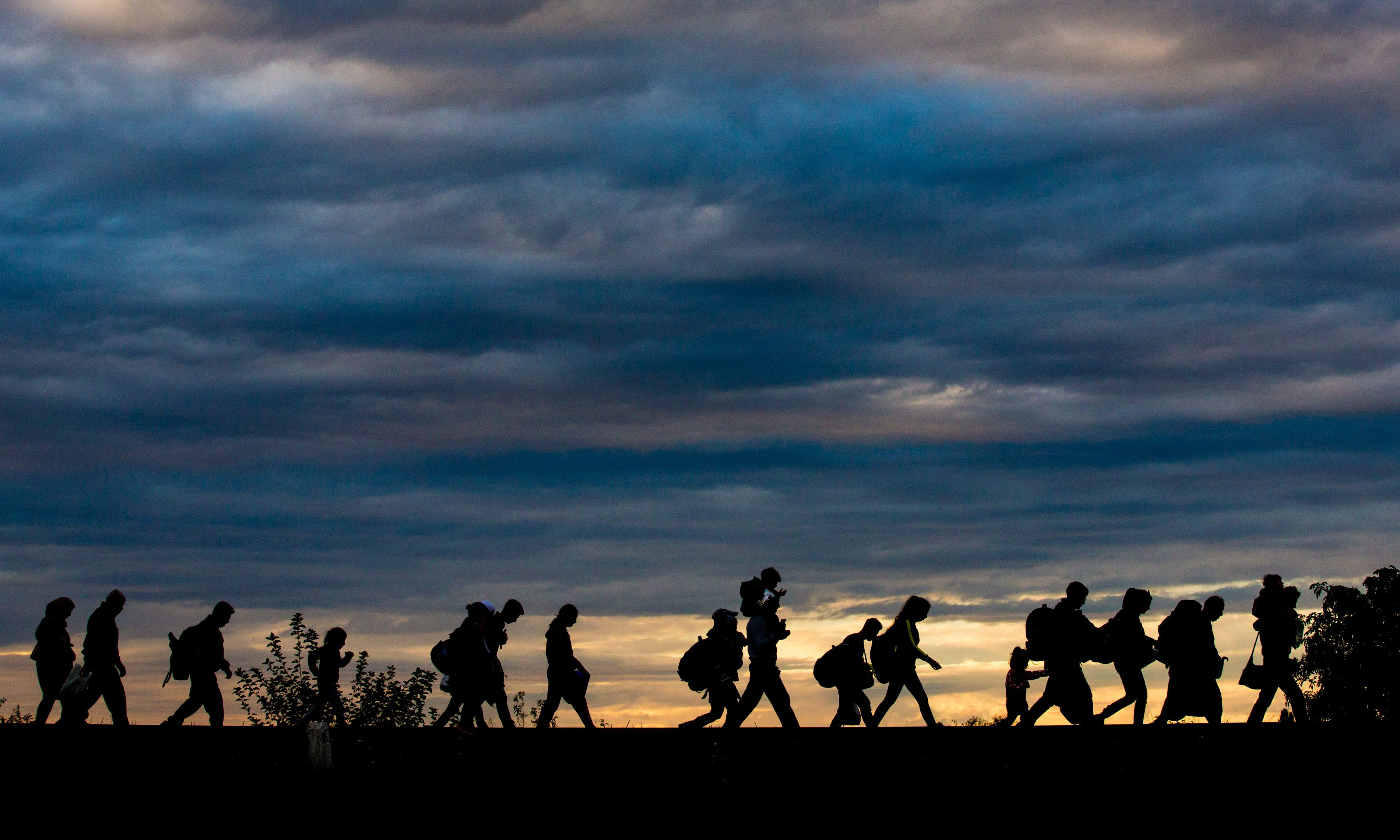 What Are Dts >> The Refugee Crisis | Steps of Justice
